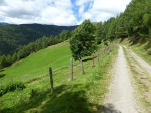 Okolí Turracheru na kole_L1